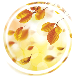 Fallende Blätter, Karola Lahrmann